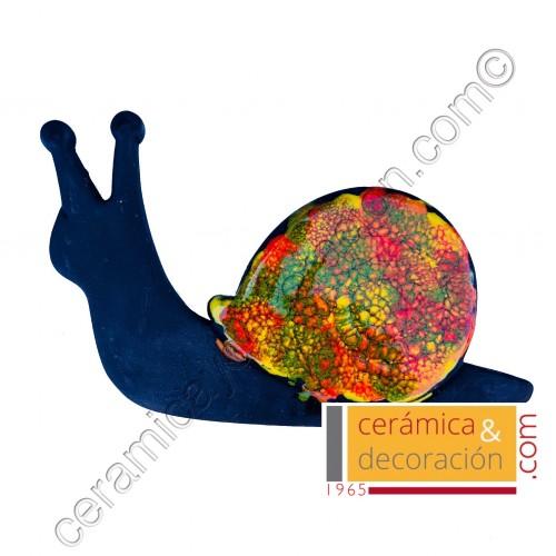 Caracol Multicolor