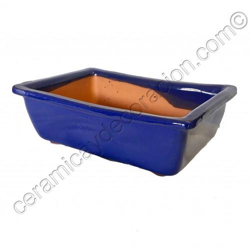 Maceta Bonsai rectangular alta azul