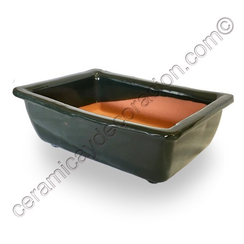 Maceta Bonsai rectangular alta verde